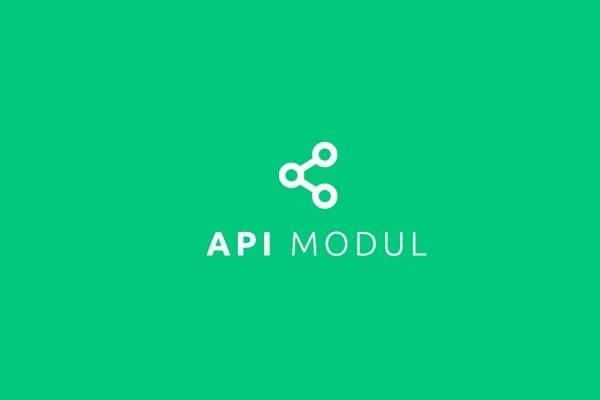 API Modul
